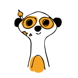 suricats-designer