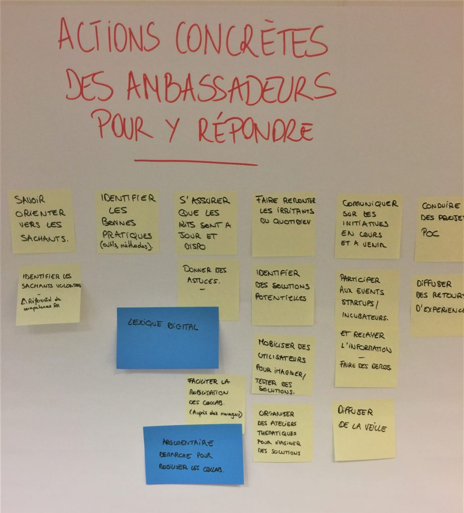 actions-acculturation-ambassadeurs-digitaux