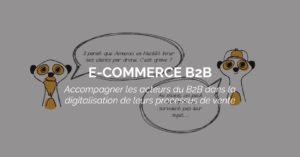 portail-ecommerce-B2B-suricats
