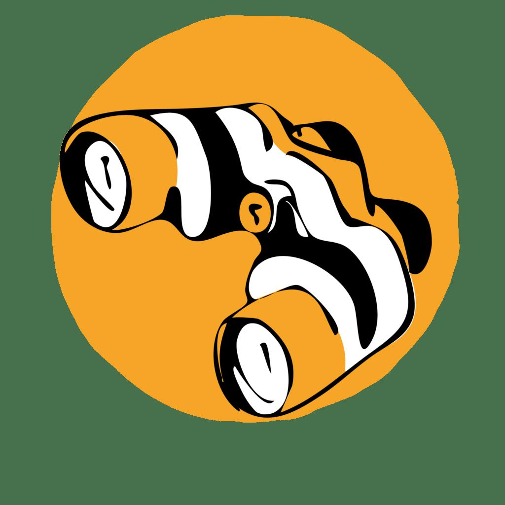 Suricats-stratégie-digitale