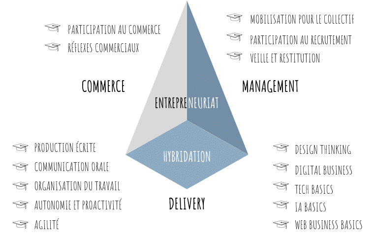 Commerce, Management, Delivery - les badges fondamentaux Suricats
