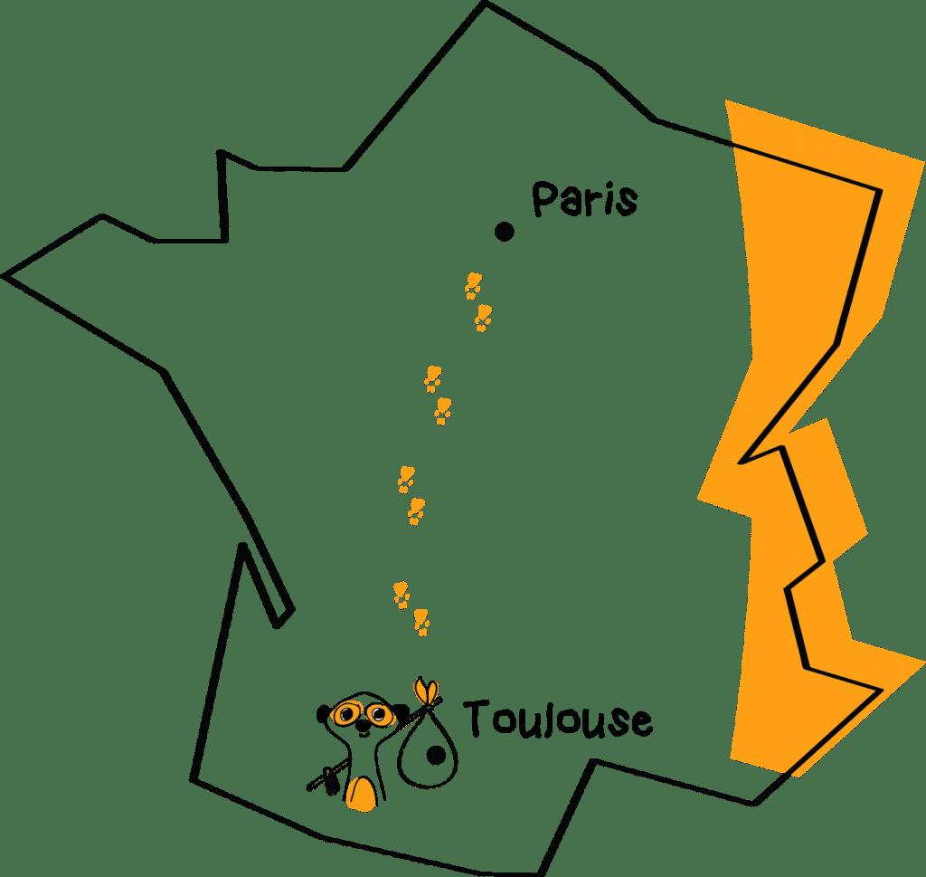 Suricats s'installe à Toulouse