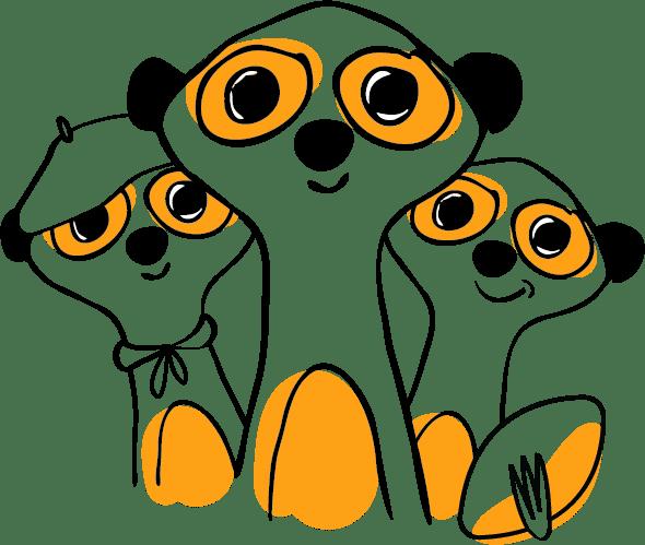 suricats team toulouse