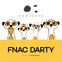 webinar Fnac Darty et Suricats -Tech Frugale durable
